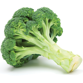 broccoli_commodity-page