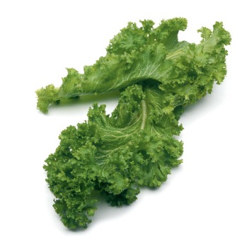 ING-mustard-greens-thumb1x1